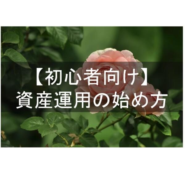 【初心者向け】資産運用の始め方