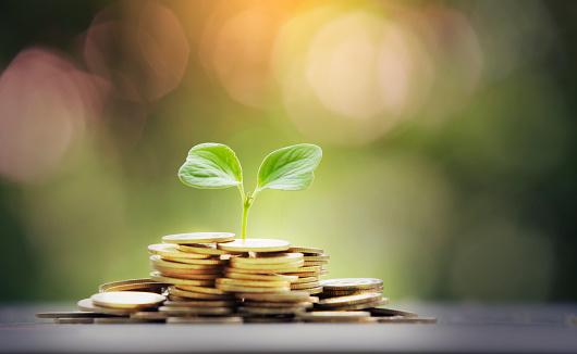 資産運用はいつ始めるのが良いのか?